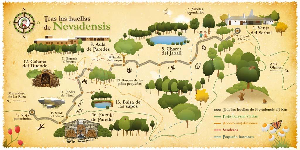 el-arbol-de-las-piruletas-mapa